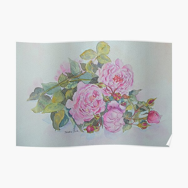 Sweet roses Poster