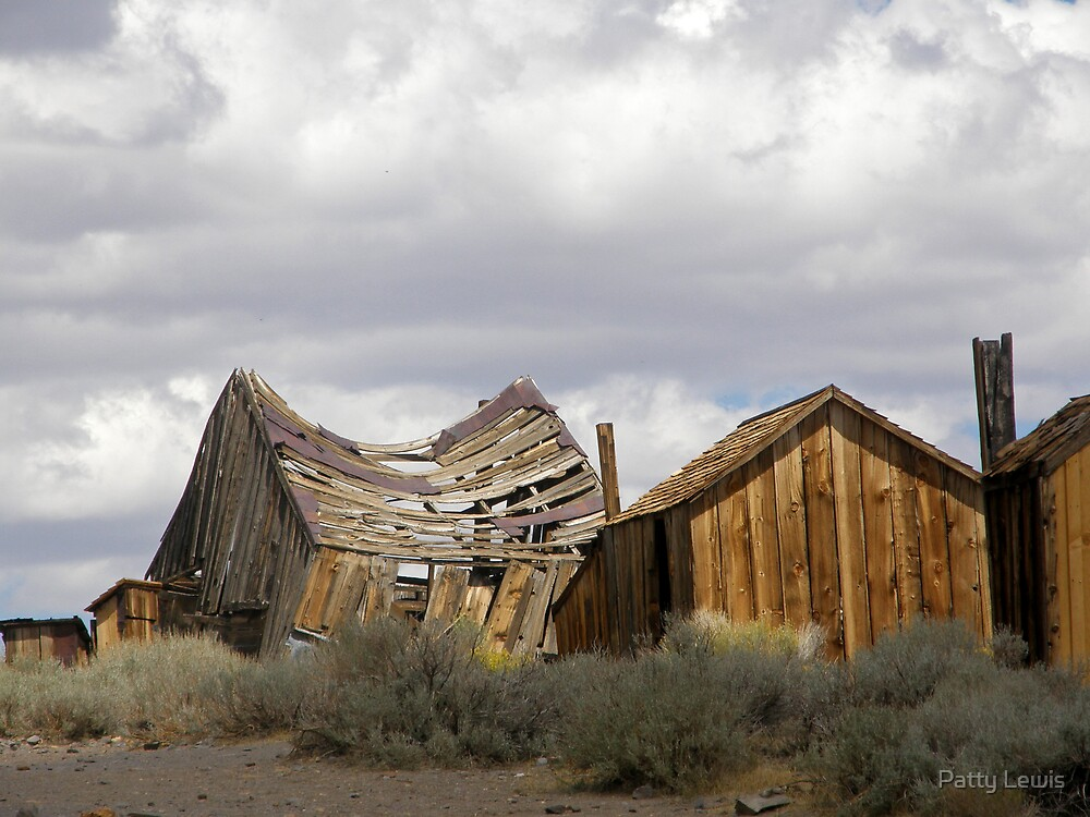 """""""Goodbye God! We are going to Bodie.""""  by Patty Boyte"""