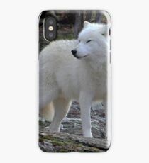 Arctic Wolf on the alert. iPhone Case