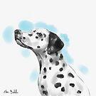 Cute Dalmatian Watercolor Sketch by ibadishi