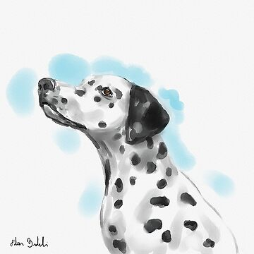 Cute Dalmatian Watercolor Sketch by ibadishi