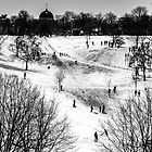 Greenwich park in the snow by Joe Gillbanks