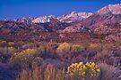 Sierras Alpine Glow by photosbyflood