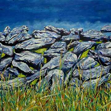 Burren Wall, County Clare, Ireland by eolai