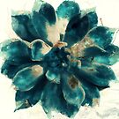 Cactus Blue by mindydidit