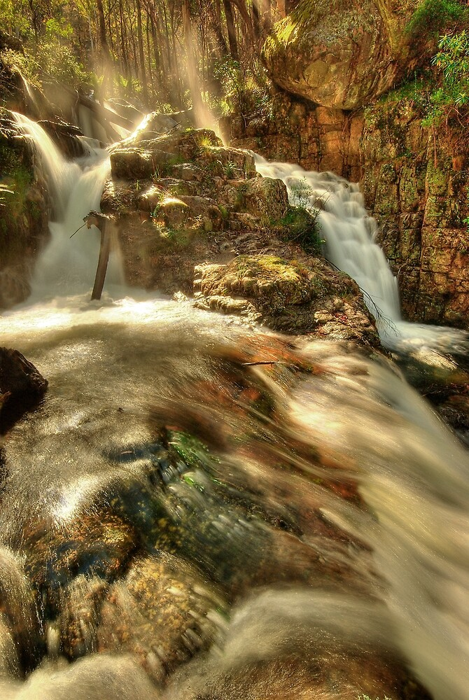 Nigothoruk Creek, Alpine NP by Kevin McGennan