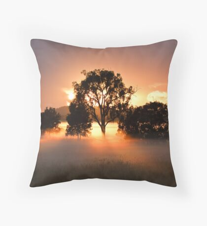 Oxley Creek Commons Sunrise Throw Pillow