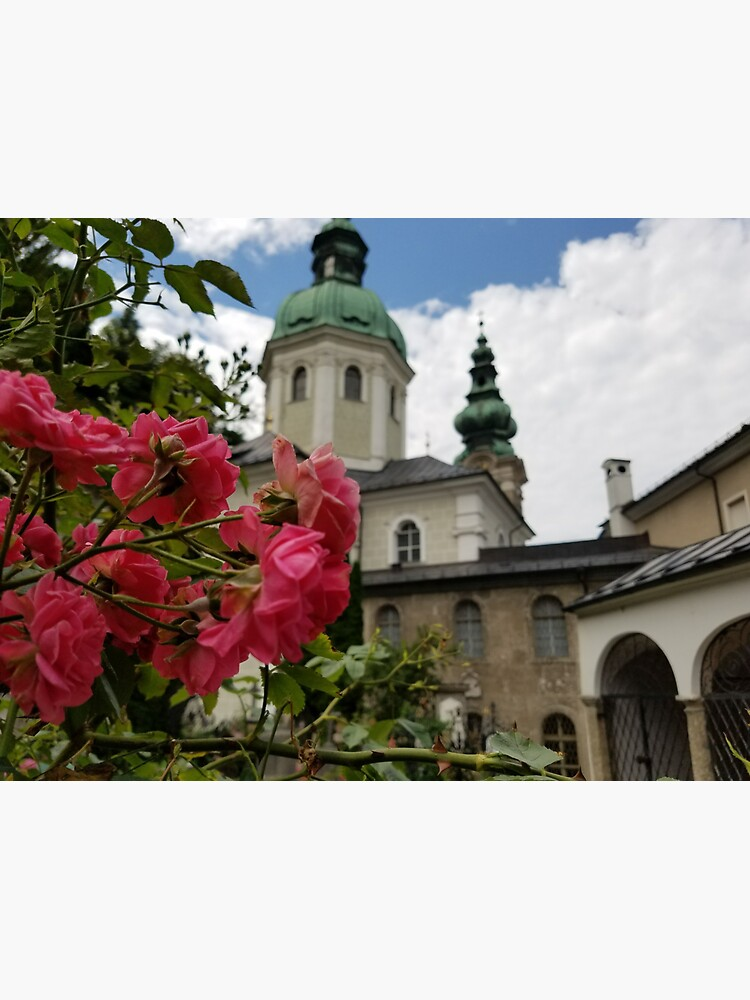 Roses in Front of 12th Century Chapel, Austria by Darlirra