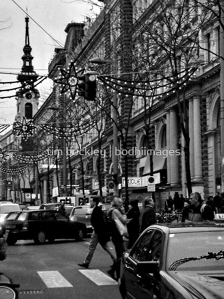 xmas streets. vienna, austria by tim buckley | bodhiimages