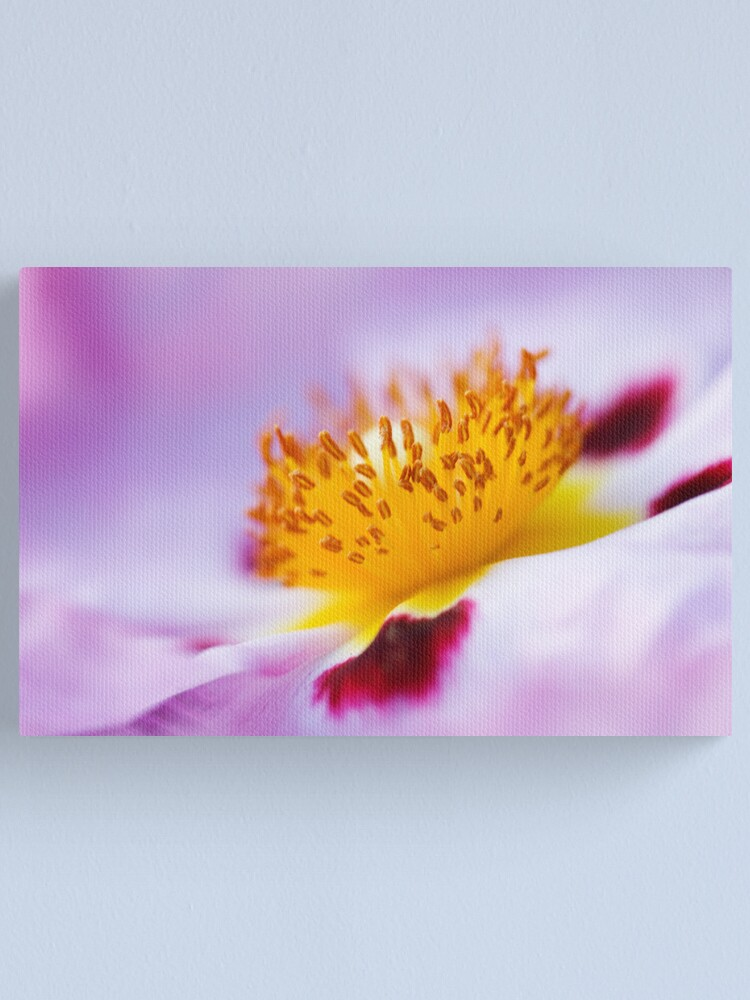 Alternate view of Exotic Canvas Print