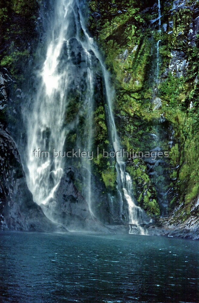 sunderland falls. milford sound, aotearoa by tim buckley | bodhiimages