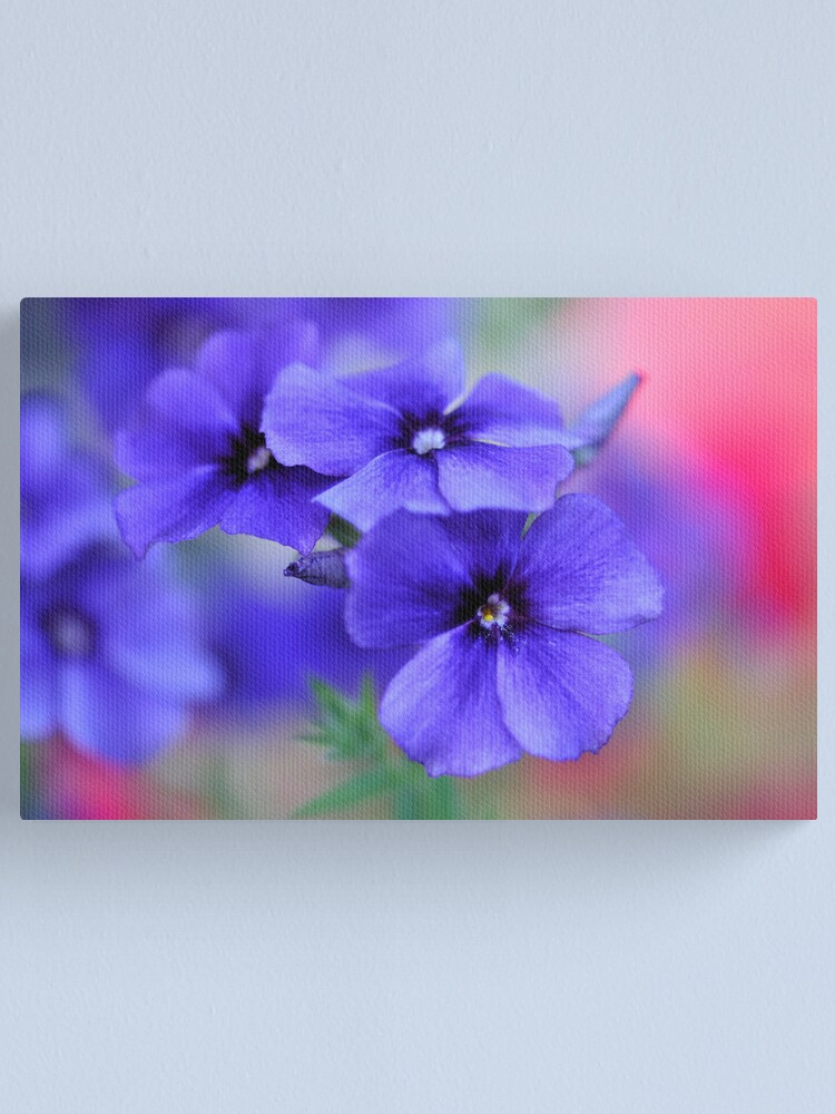 Alternate view of My Blue Heaven Canvas Print