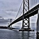 Bay Bridge, San Francisco, CA by NancyC