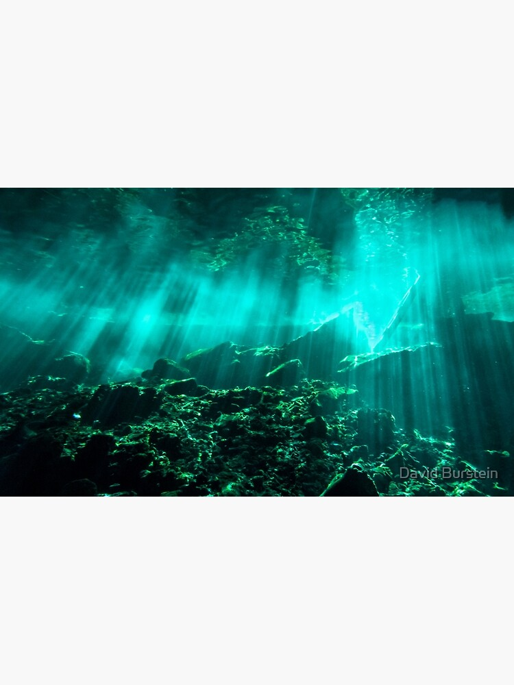 Gran Cenote by Dburstei