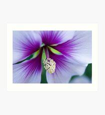 Purple Effusion Art Print