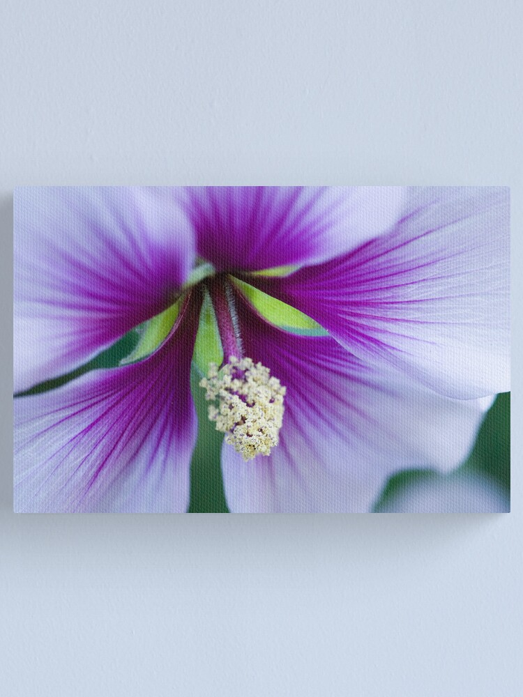 Alternate view of Purple Effusion Canvas Print