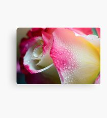 Dewy Beauty Metal Print