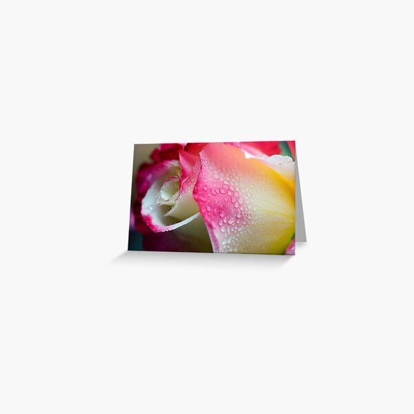 Dewy Beauty Greeting Card