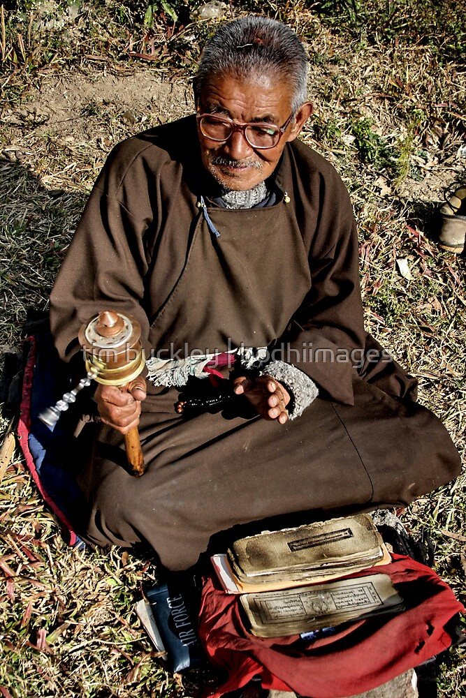 in prayer. tso pema, northern india by tim buckley | bodhiimages