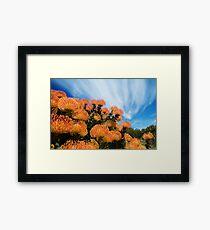 Incandescent Heights Framed Print