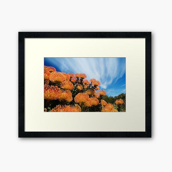 Incandescent Heights Framed Art Print