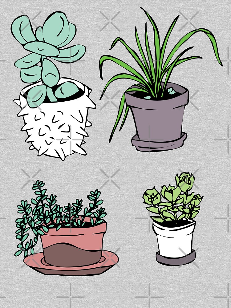 Succulents, Potted Plants by craftordiy