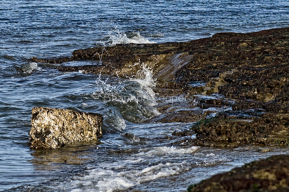 Turbulent Sound by Shannon Beauford