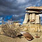 Stone Mushroom  by Valentina Gatewood