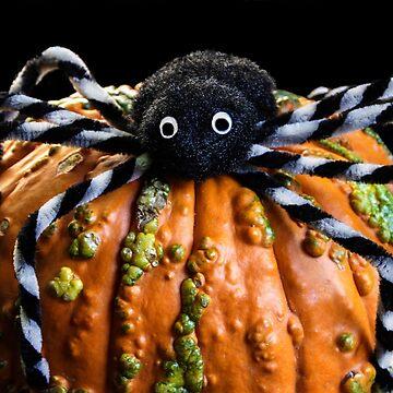 Pumpkin Spider by heatherfriedman