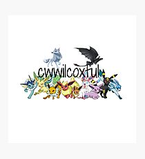 cwwilcoxful logo Photographic Print