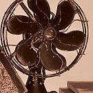 The Fan by MichelleR