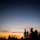 Sunset on the Forest Edge Nature Photography by artcascadia