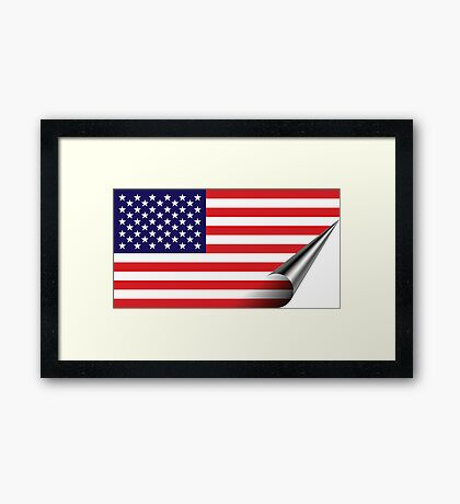 Inside USA Framed Print
