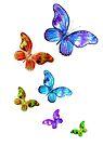 Butterfly Rainbow Chain by Linda Callaghan