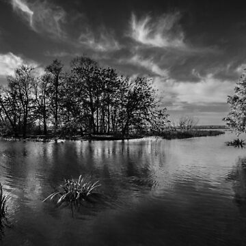 Lake Wendouree by Maiden