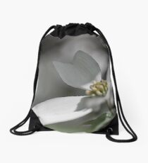 Dogwood Tree in Full Bloom This Season Drawstring Bag