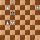Chess, #Chess #playchess #chesspiece #chessset #chessmaster #Chinesechess #chesstournament #gameofchess #chessboard by znamenski