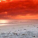 A Stroll On The Beach by DJ Florek