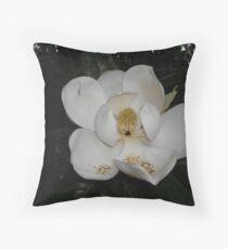 Südliche Magnolie - erste Blüte Dekokissen