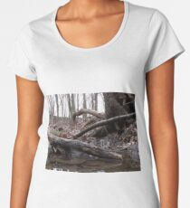 Close to earth Women's Premium T-Shirt