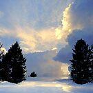 Heavenly! by Elfriede Fulda