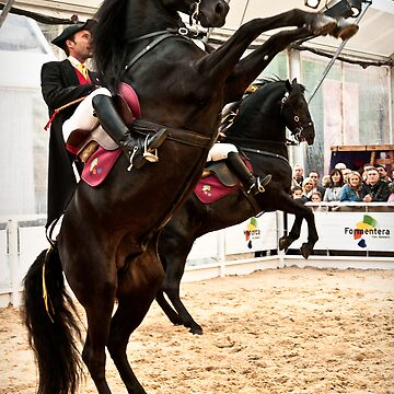 Menorcan dressage - Spanish step by Cvail73