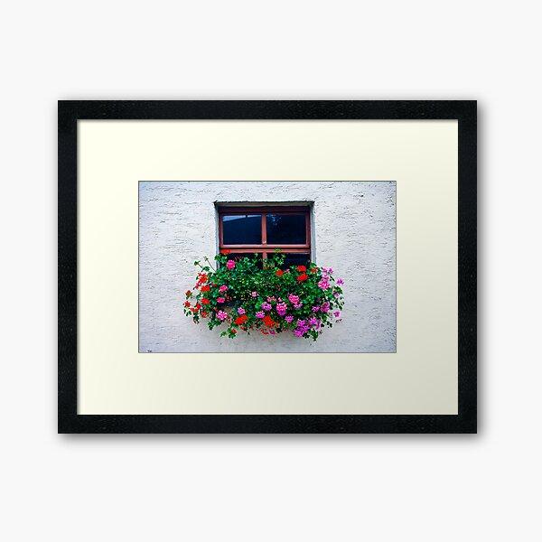 Flower Box Framed Art Print