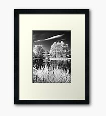 Film Museum Framed Print