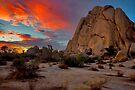 Joshua Tree Sunset 3 by photosbyflood