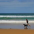 One Man and his Dog, Great Ocean Road, Australia by John Dalkin