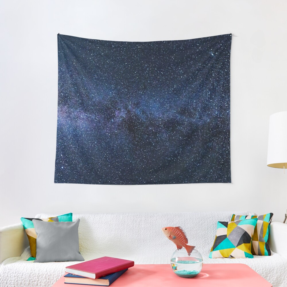 The Milky Way Tapestry