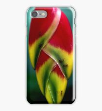 Heliconia up close iPhone Case/Skin