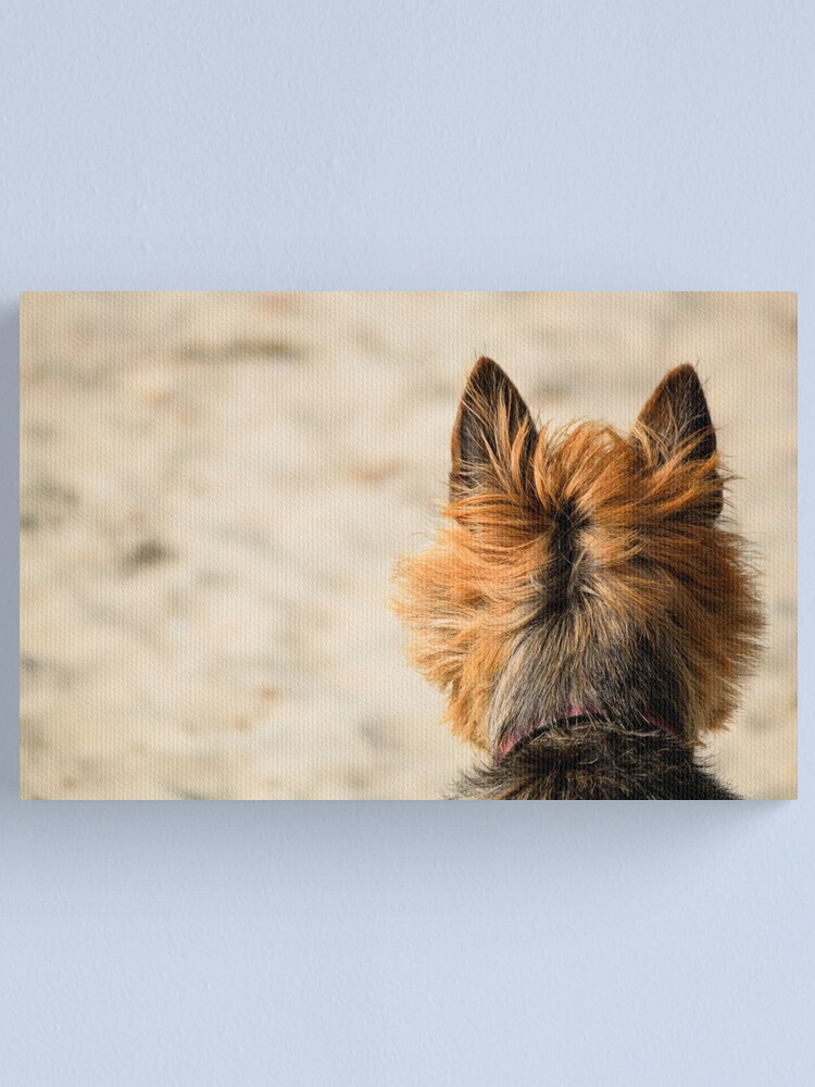 Alternate view of On the Look Out Canvas Print
