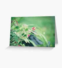 raindrops and rosies Greeting Card
